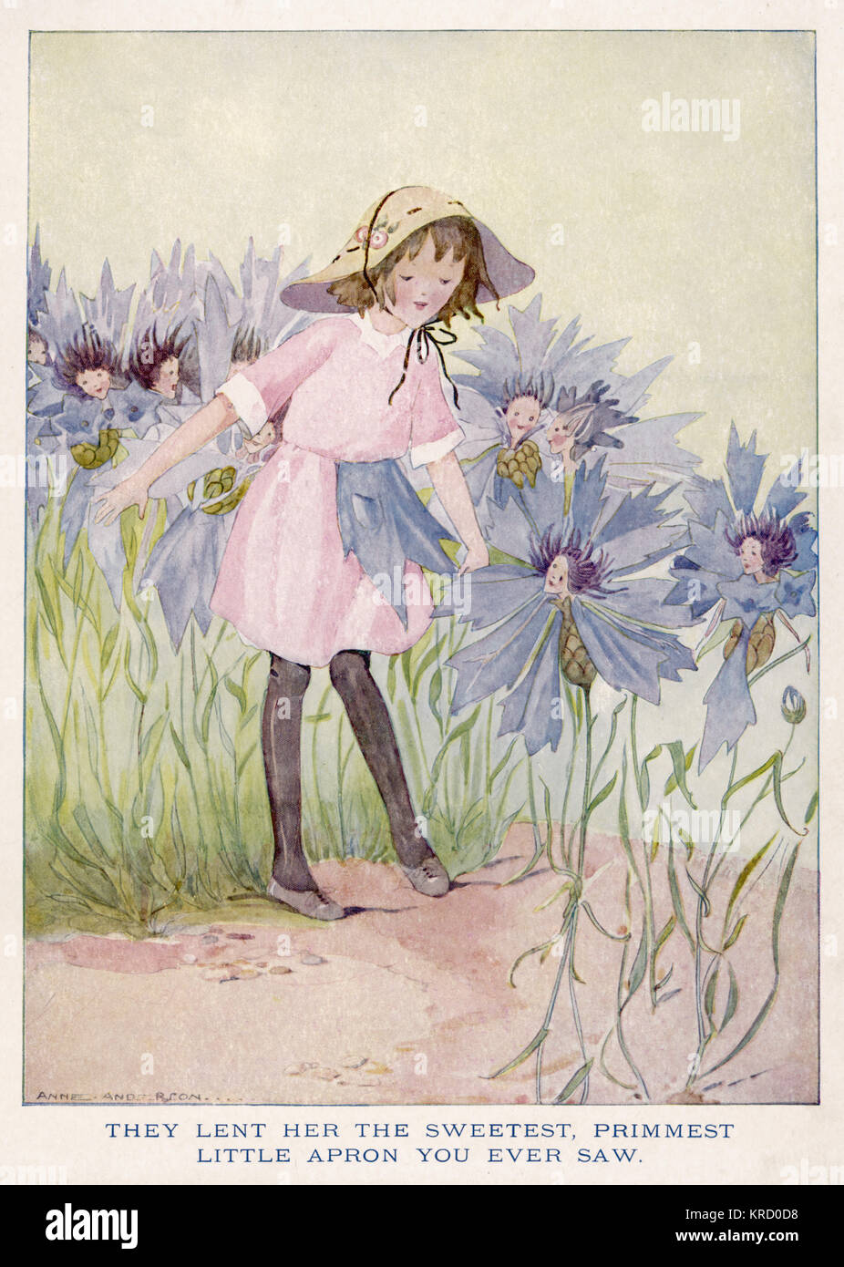A young girl is lent a petal from a Cornflower to make an apron for her.     Date: circa 1920 - Stock Image