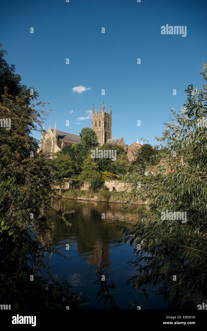 A view of Worcester Cathedral from across the River Severn.  The cathedral was built between 1084 and 1504.     - Stock Image