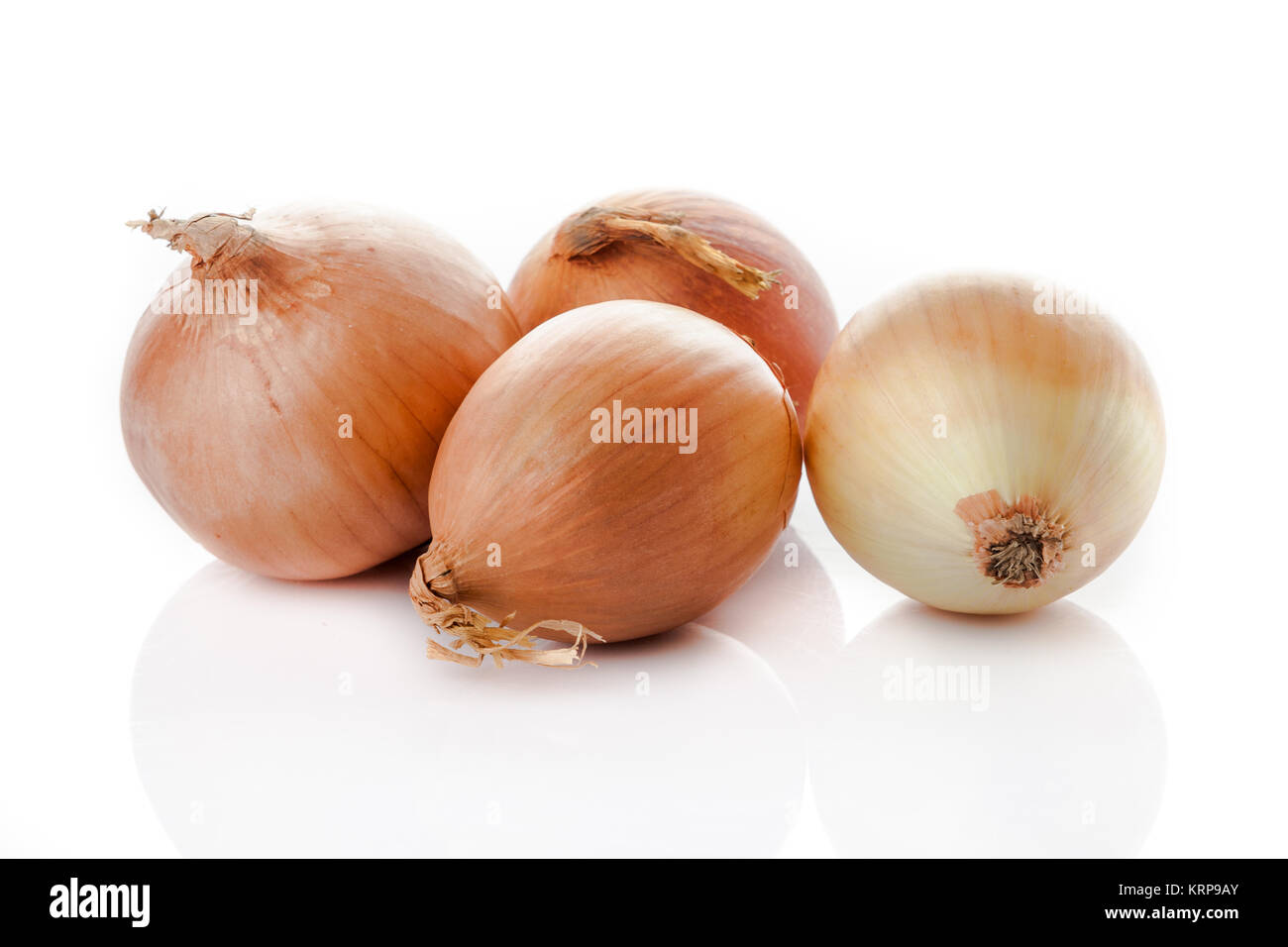 bulb onion production guide Under drought stress, onions are more likely to split or form double and multiple bulbs onions have a high water requirement, usually around 3in of water per week.