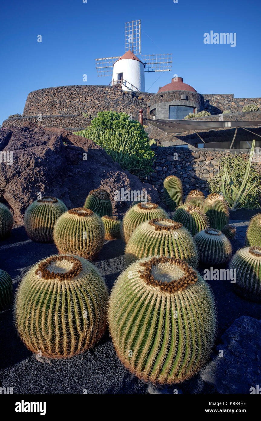 Jardin de Cactus, windmill, Lanzarote, Canary Islands, Spain - Stock Image