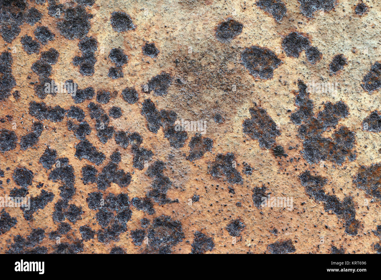 Old corroded surface of the metal plate - Stock Image