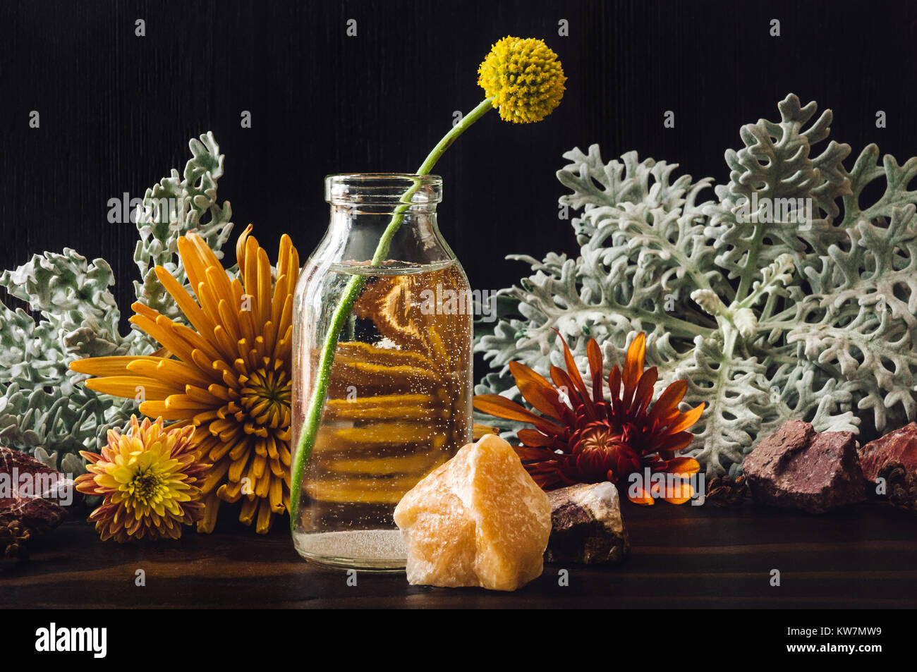 Craspedia with Chrysanthemums, Dusty Miller and Stones - Stock Image