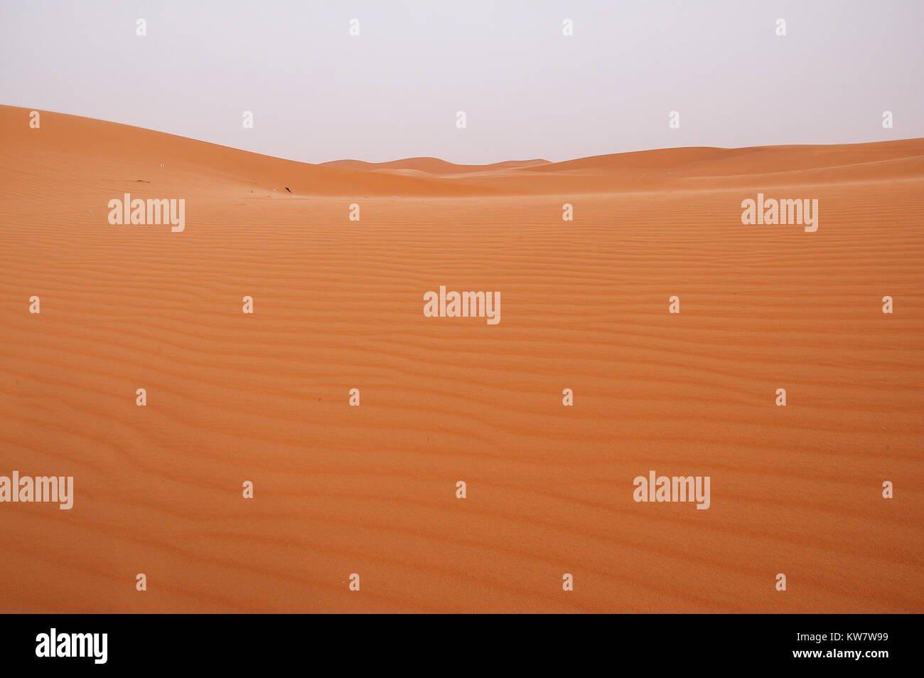 The view of Riyadh desert - Stock Image