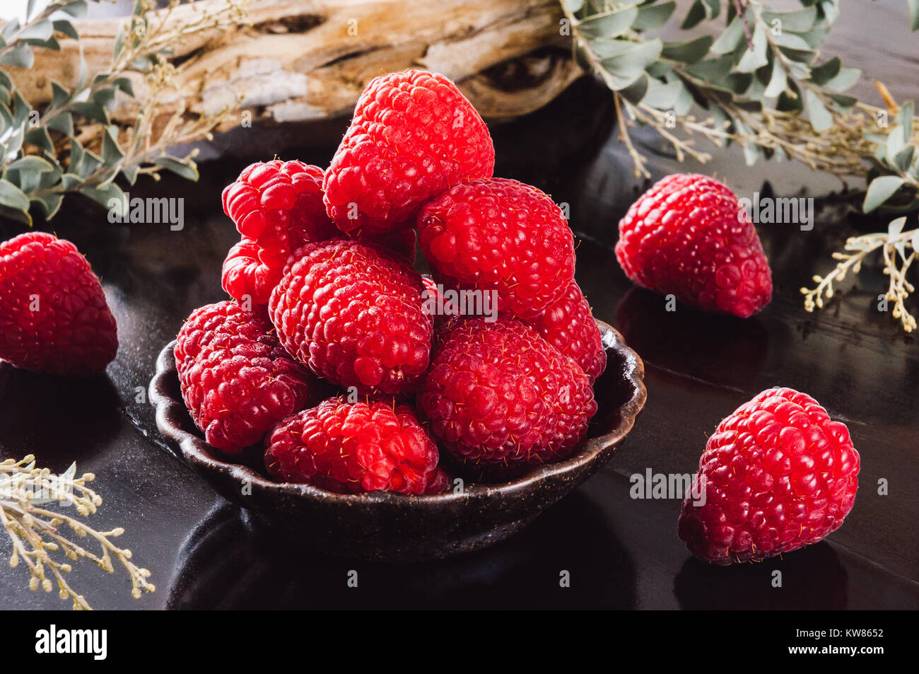 Fresh Raspberries with Dried Wood and Botanicals - Stock Image