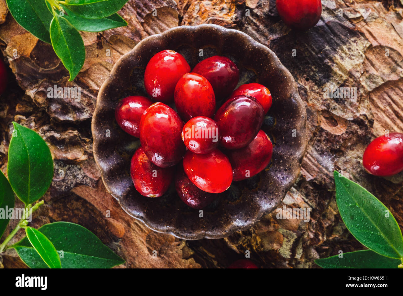 Fresh Cranberries on Natural Wood Surface - Stock Image