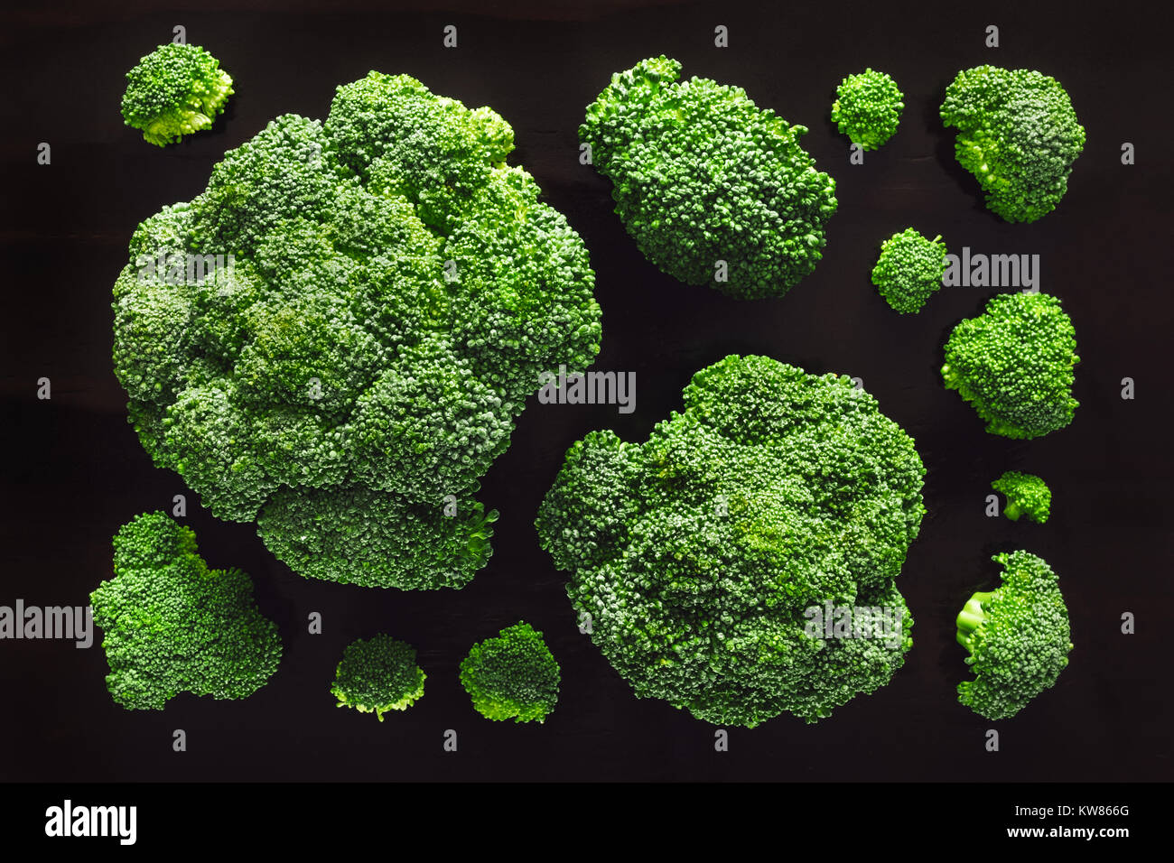 Broccoli Flower From Above on Dark Table - Stock Image