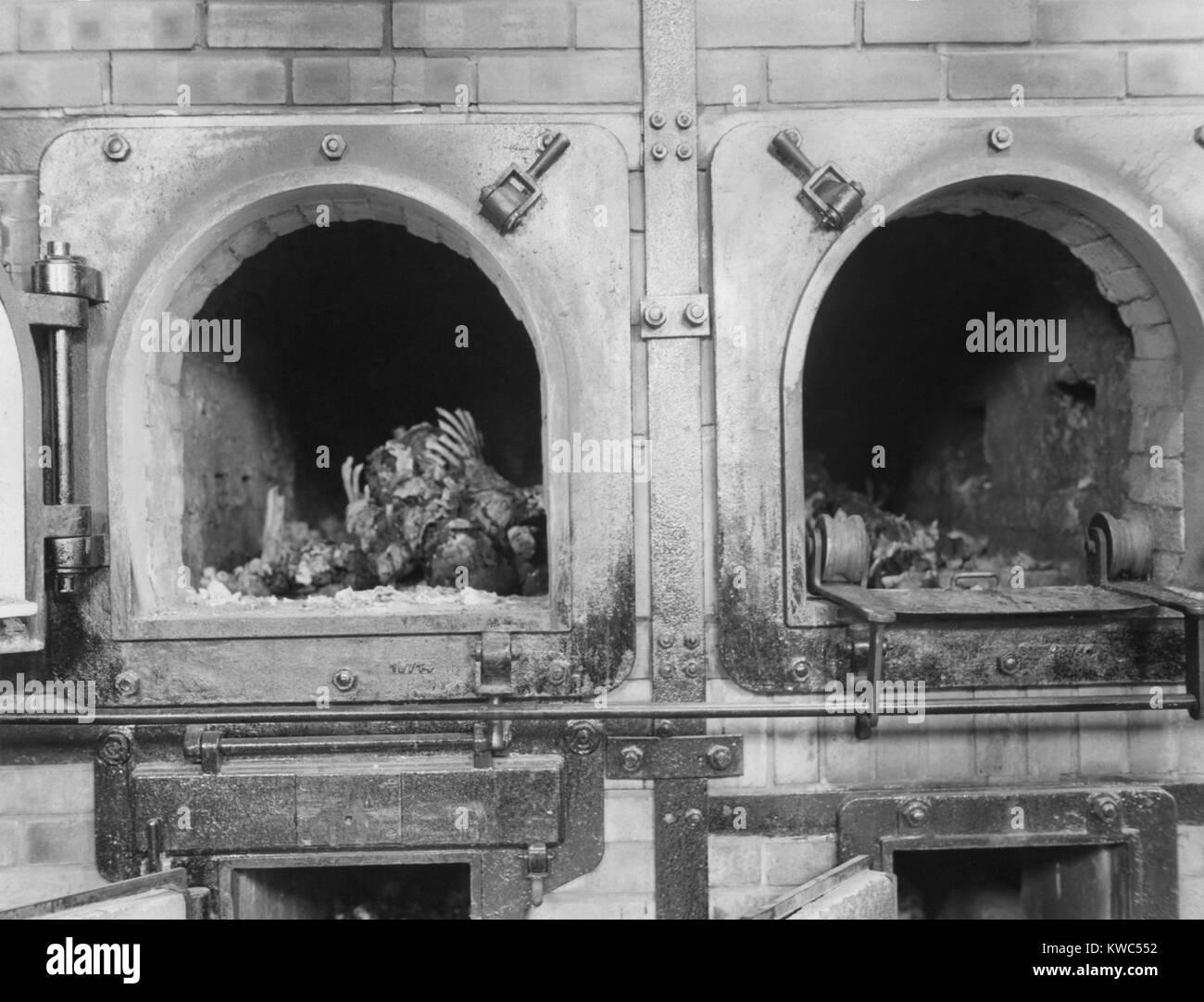 Buchenwald 1945 stock photos buchenwald 1945 stock - Kwc armaturen deutschland ...