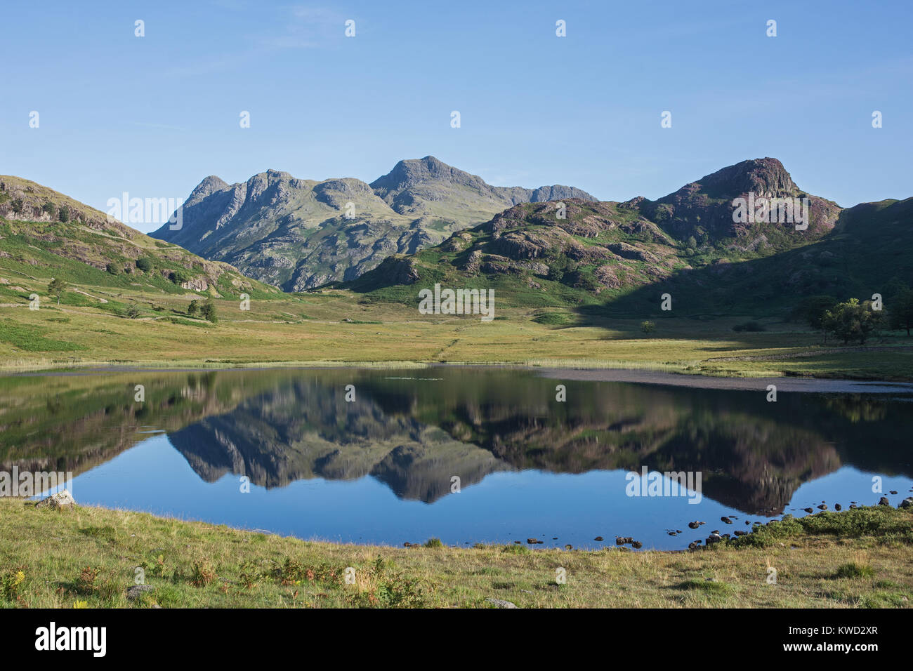 Blea Tarn and the Langdale Pikes Cumbria English Lake District England on summer morning with bright sun and reflections - Stock Image