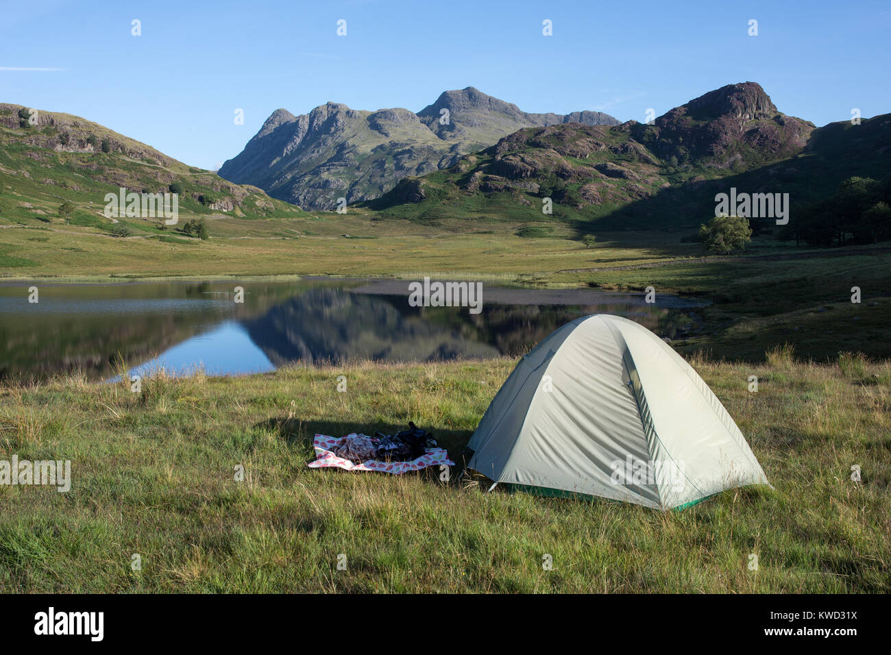 Blea Tarn and Langdale Pikes Cumbria English Lake District England on summer morning with reflections and mountain - Stock Image