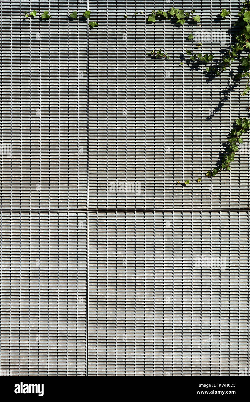 Plant growing on a building facade covered in galvanised metal grills - Stock Image
