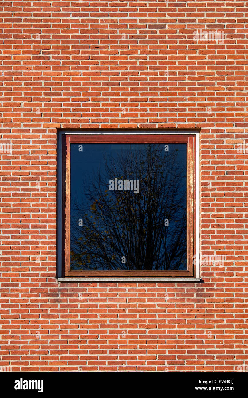 Square window with hardwood frame in a red brick facade - Stock Image