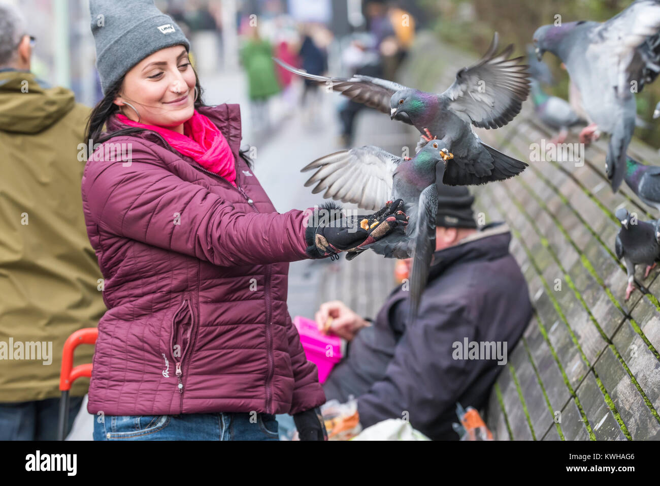 woman-feeding-feral-pigeons-columba-livia-domestica-in-the-city-of-KWHAG6.jpg