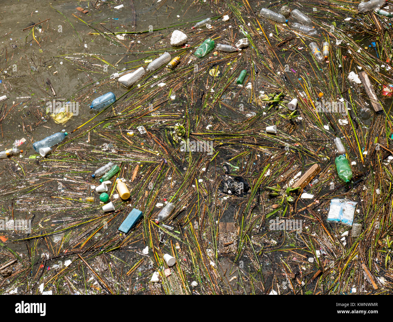 Pollution, waste; trash; garbage floating in Atlantic Ocean along coast near Aeroparque Jorge Newbery; Buenos Aires; - Stock Image