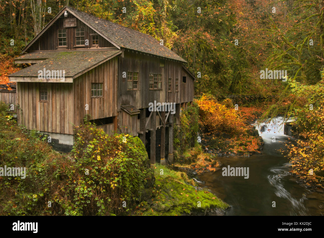 Cedar Creek rushes through a narrow gorge and autumn colors around the Historic Cedar Creek Grist Mill (1876) in - Stock Image