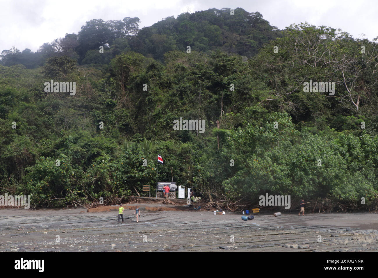 Tourist wading in ocean to boat view from ocean Corcovado national Park Osa Peninsula Costa Rica - Stock Image