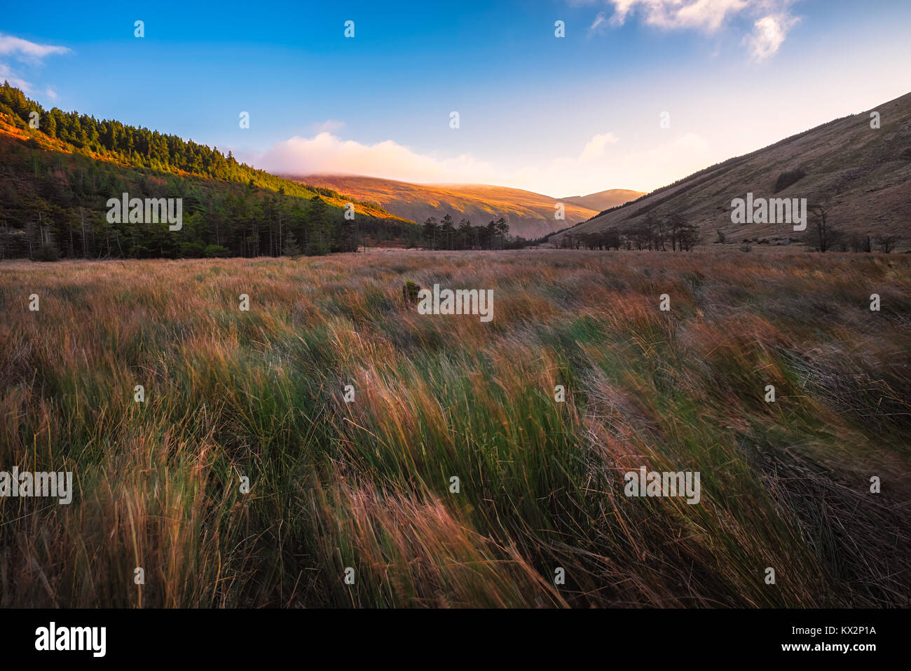 Landscape of Glenmalure in Wicklow Mountains - Ireland - Stock Image