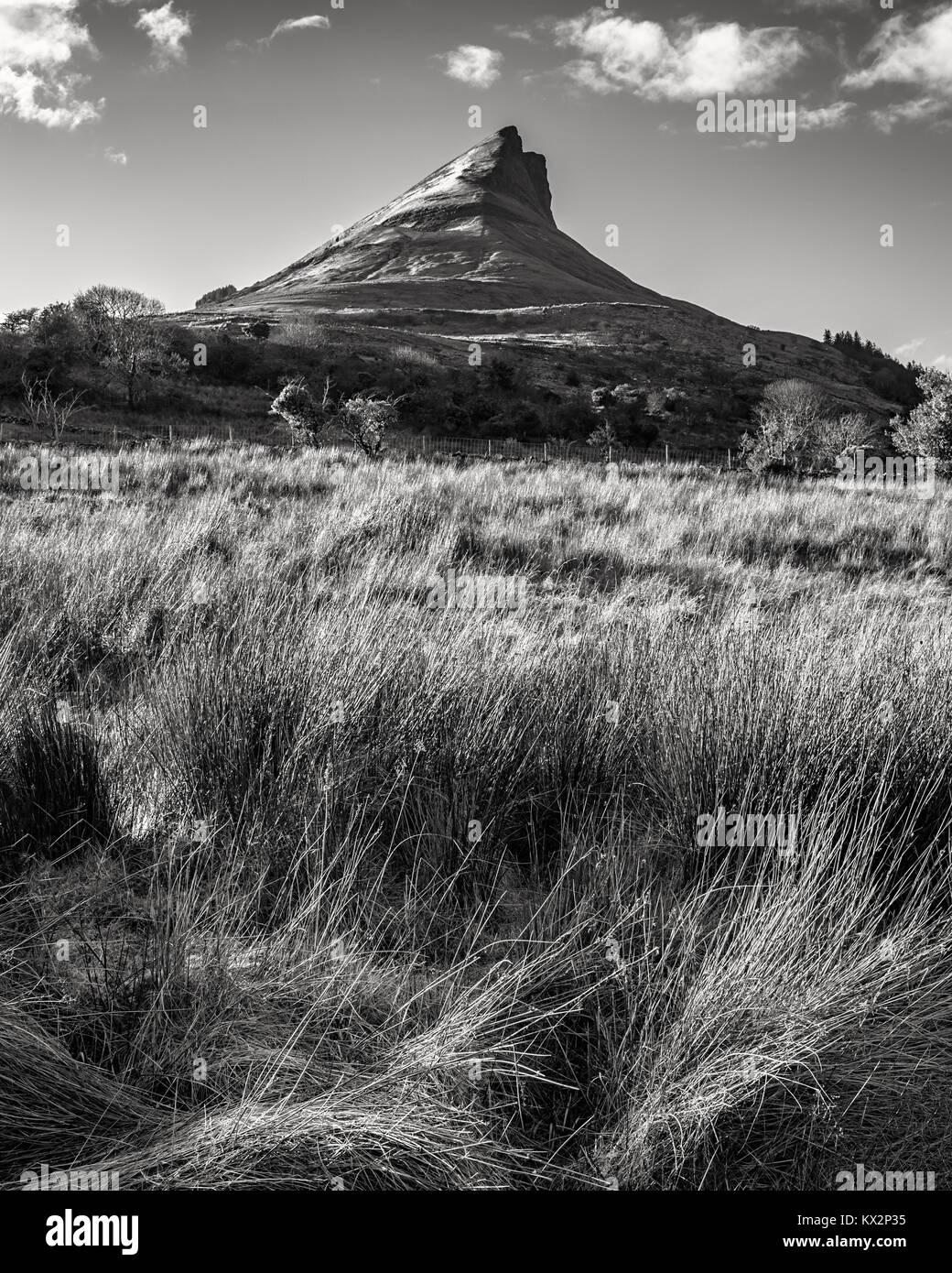 Benwiskin mountain in Sligo - Ireland - Stock Image