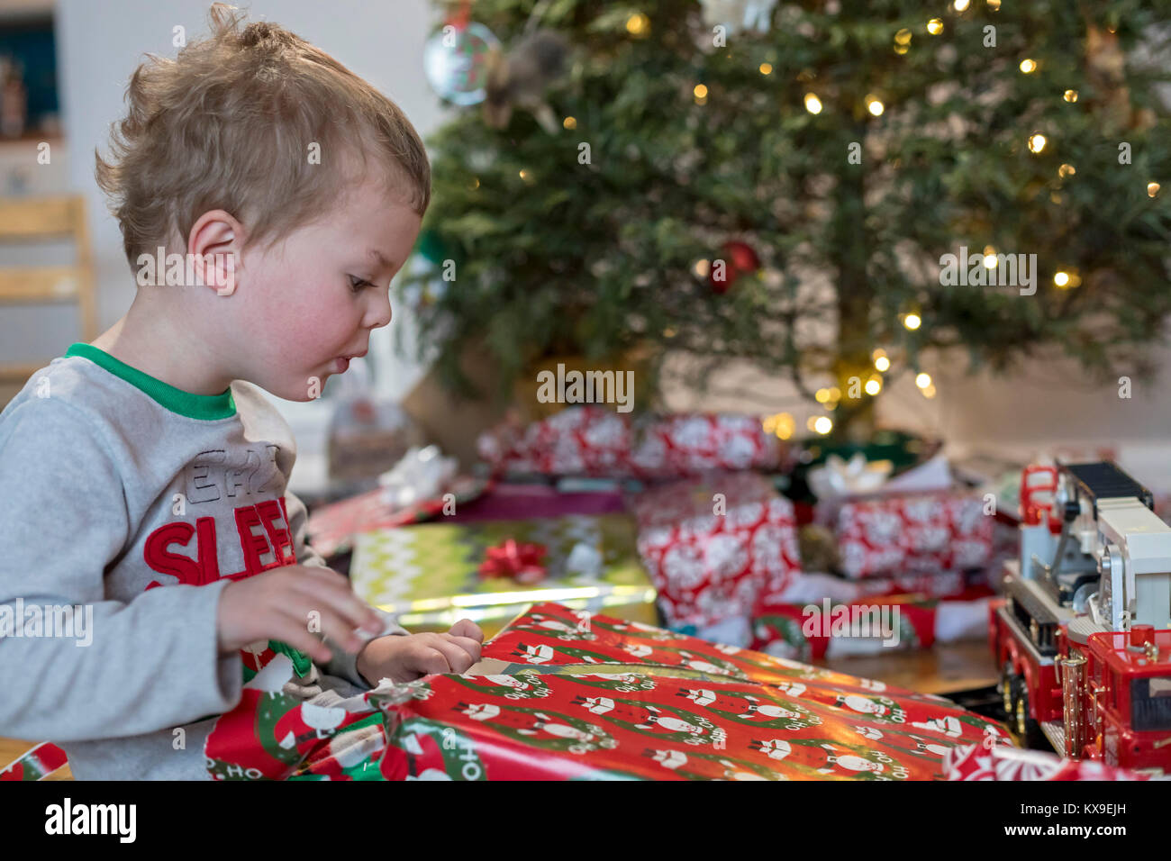 Wheat Ridge, Colorado - Adam Hjermstad Jr., 3, opens presents by his family's Christmas tree on Christmas morning. - Stock Image