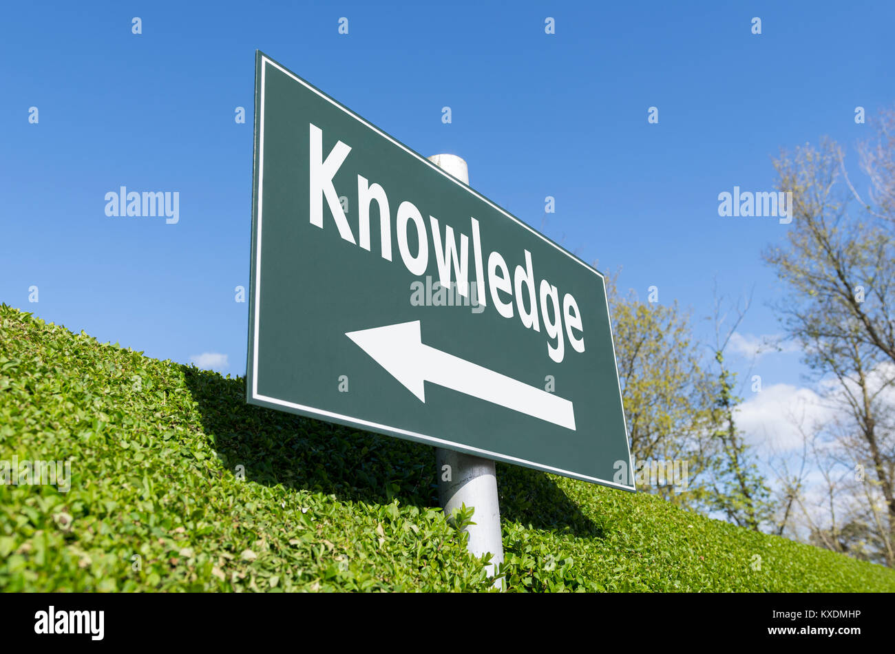 Knowledge concept. Sign pointing in the direction of knowledge. - Stock Image