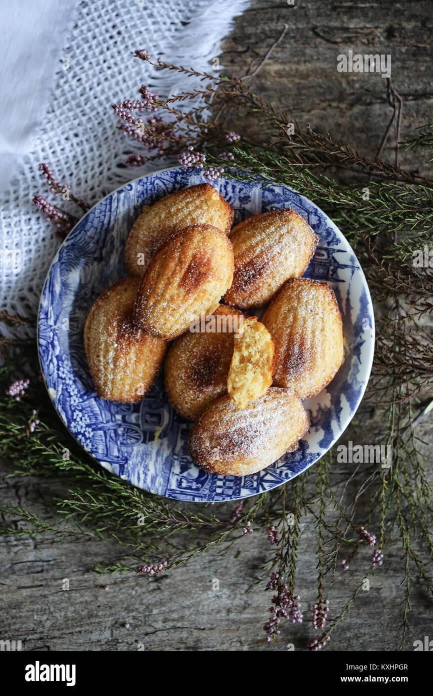 Skyr and vanilla madeleines - Stock Image