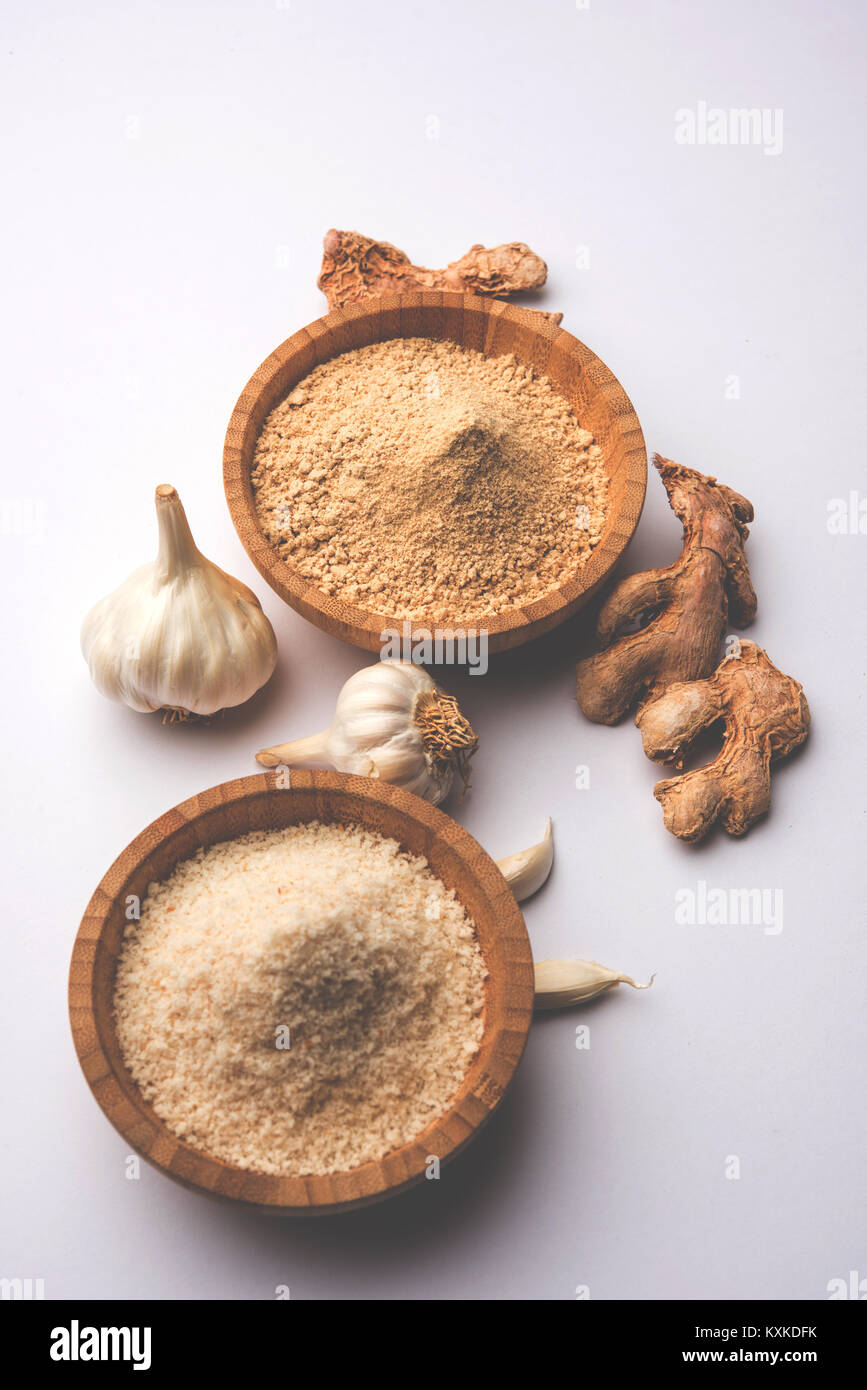 Garlic powder is ground, dehydrated garlic. It's a common seasoning  for pasta, pizza and grilled chicken. - Stock Image