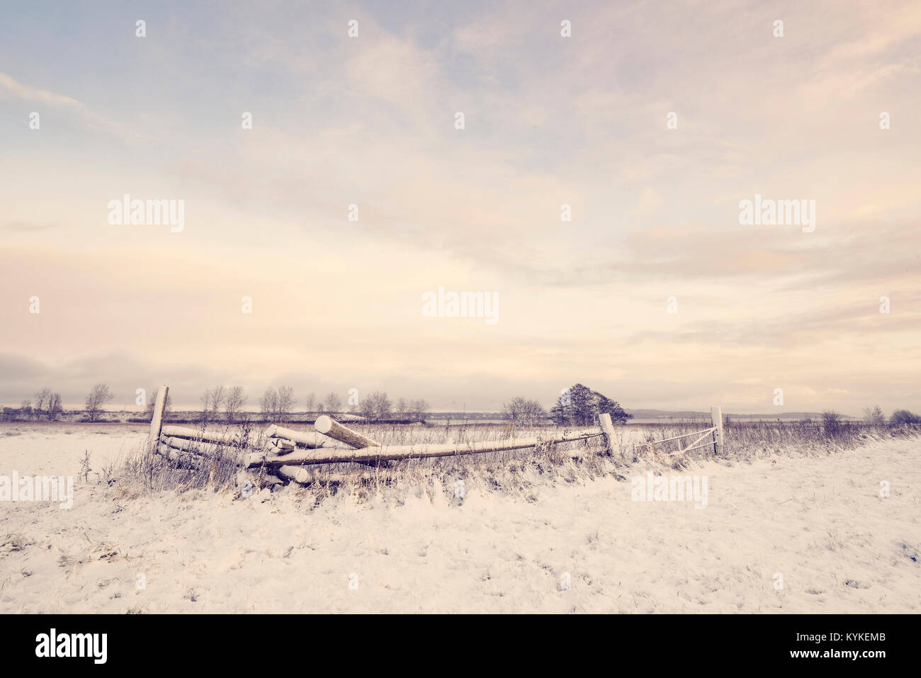 Winter scenery with a wooden fence covered in snow on a rural field in the morning sunrise - Stock Image