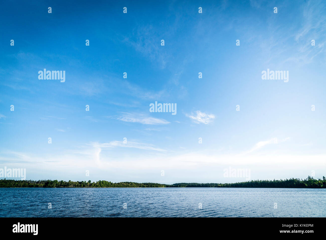 Large lake in pure nature surroundings with forest all around and blue sky - Stock Image