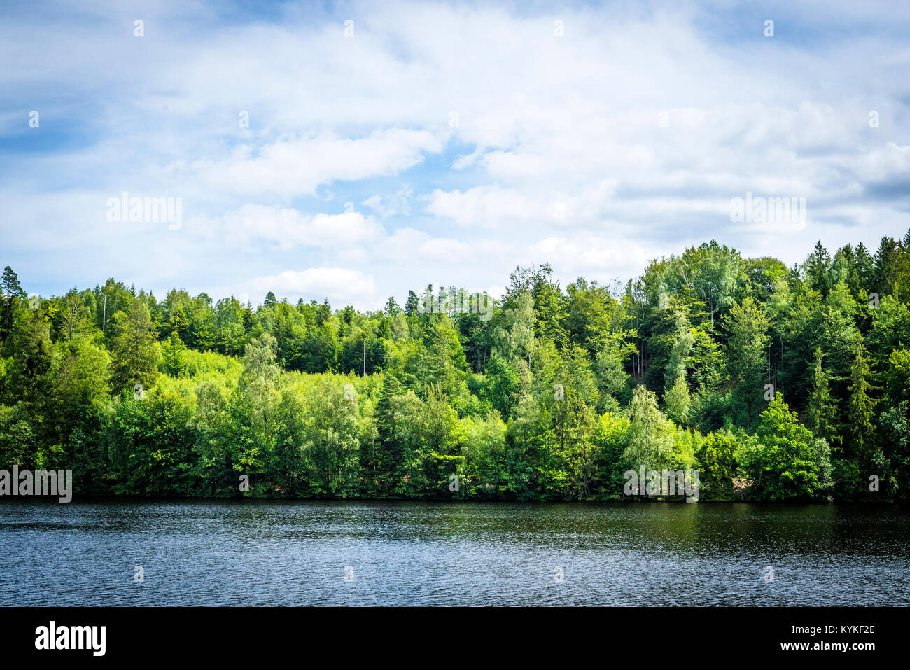 Lake scenery with green trees and blue sky in the summertime - Stock Image