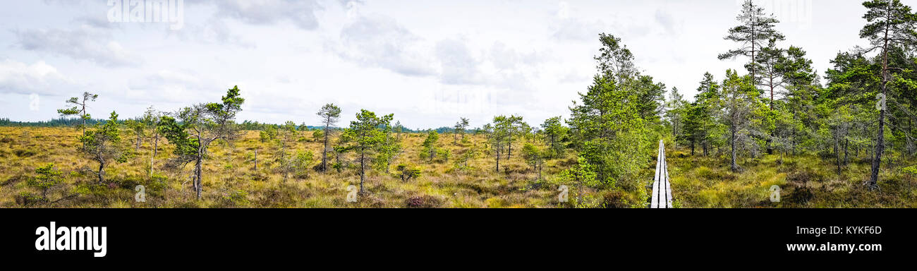 Wilderness panorama landscape of a prairie scenery with a nature trail made of wooden planks - Stock Image