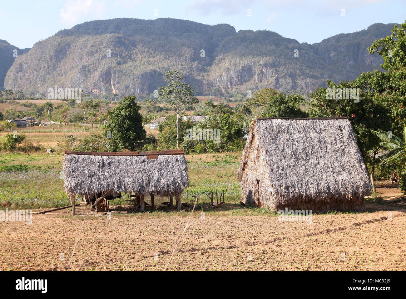 Cuba - countryside thatched huts and karstic mogotes in Vinales National Park. UNESCO World Heritage Site. - Stock Image