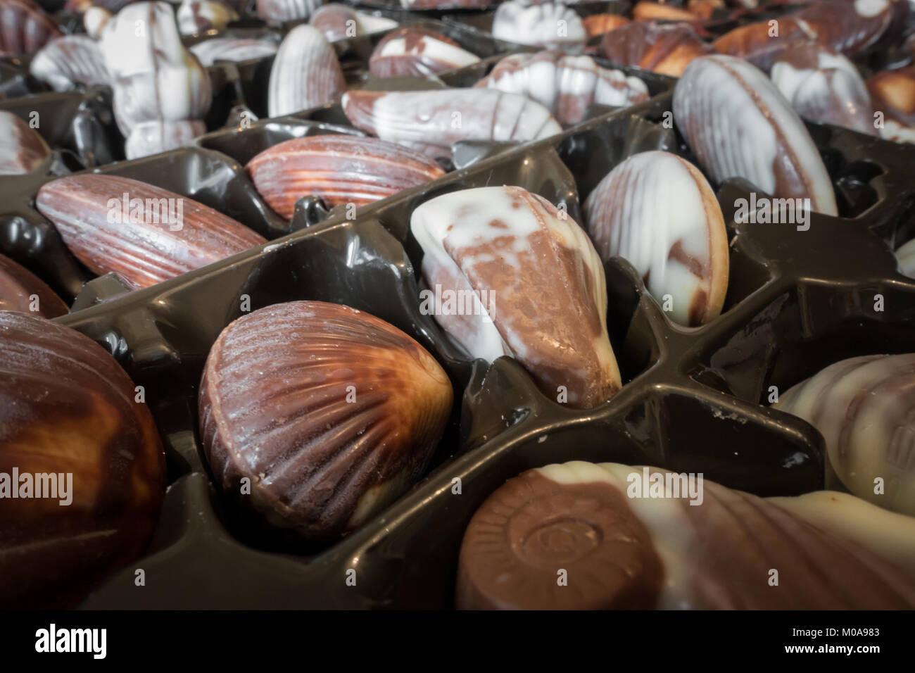 guylian-belgium-chocolate-truffle-shells-in-their-packaging-M0A983.jpg