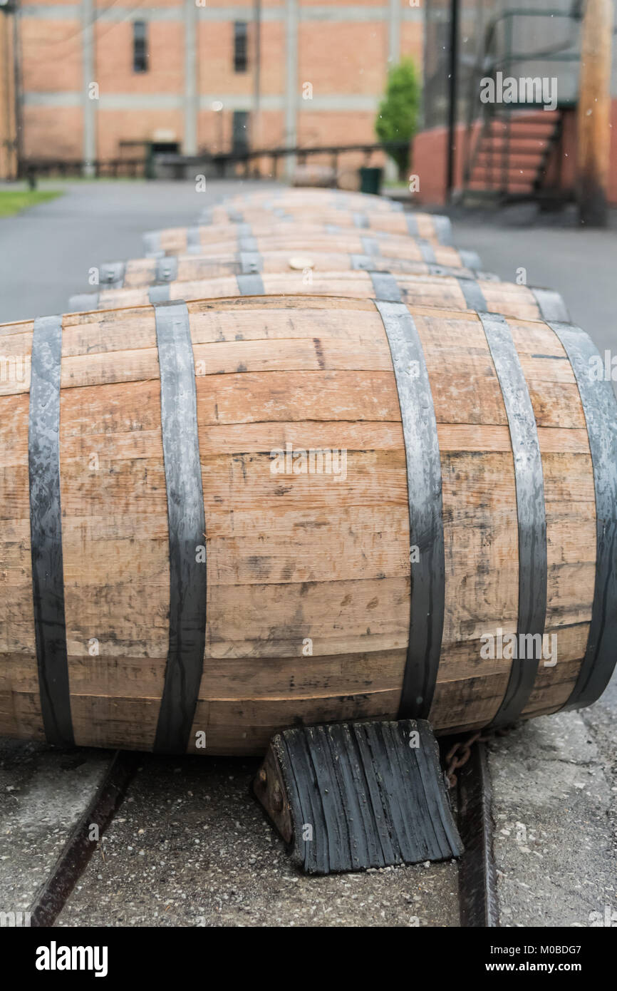 Line of Bourbon Barrels In The Rain Close Up - Stock Image