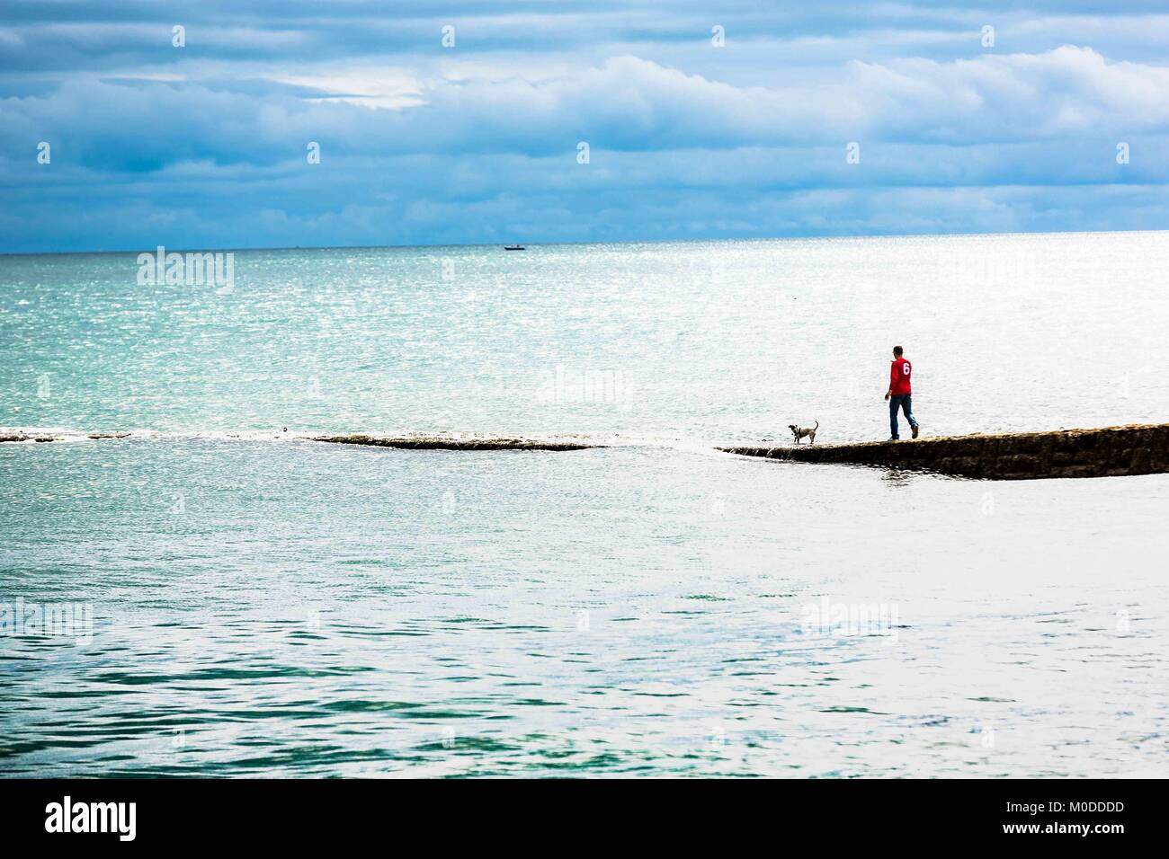 Man exercise walking a dog along a concrete jetty into the sea. - Stock Image