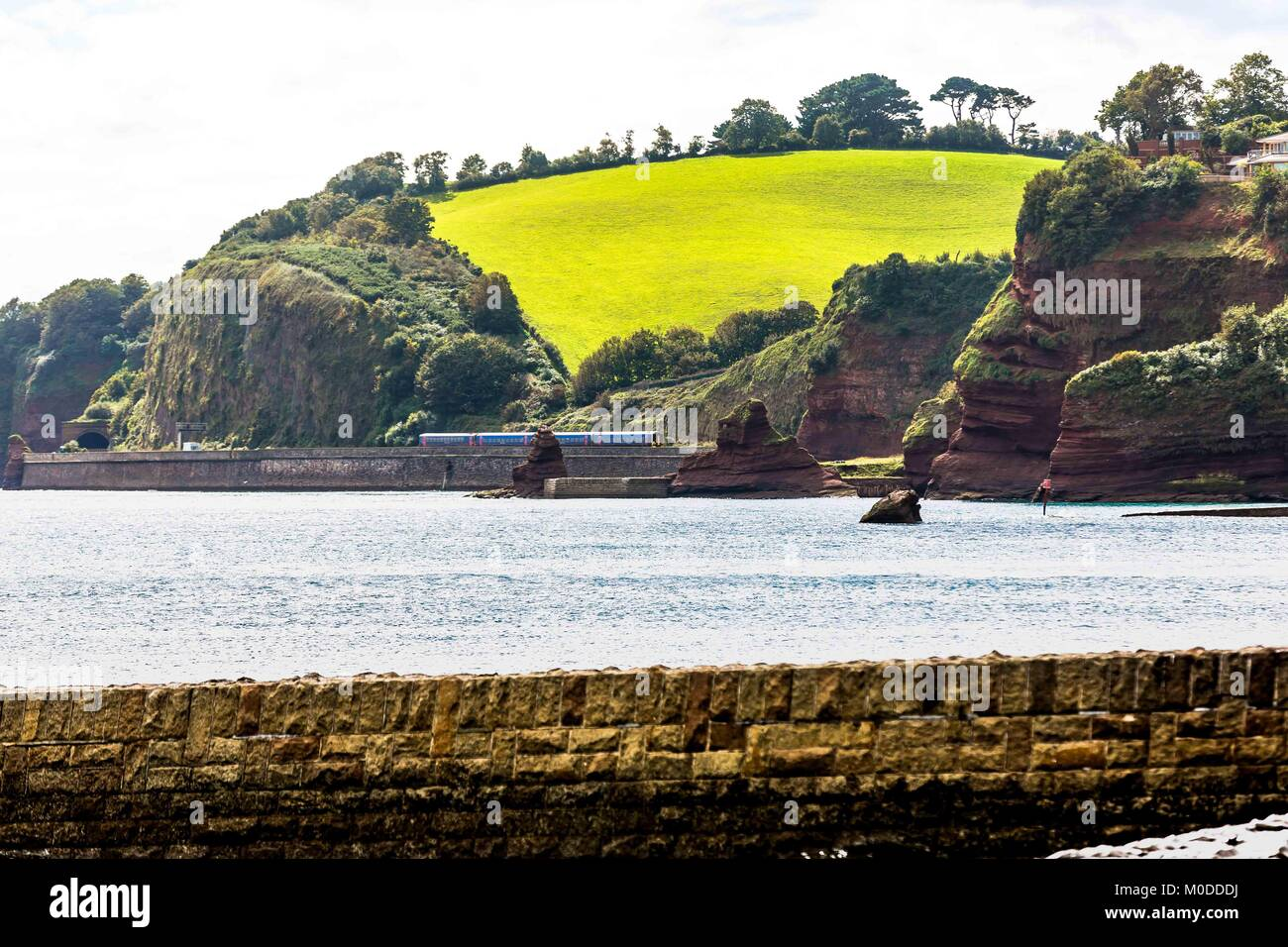 A green field in sunlight overlooking the Devon coast in England. - Stock Image