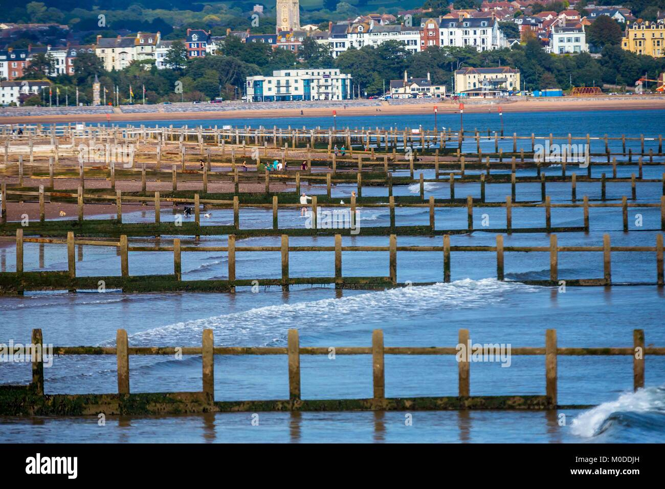 Man-made beach and shore groins protecting the english coastline in Devon. - Stock Image