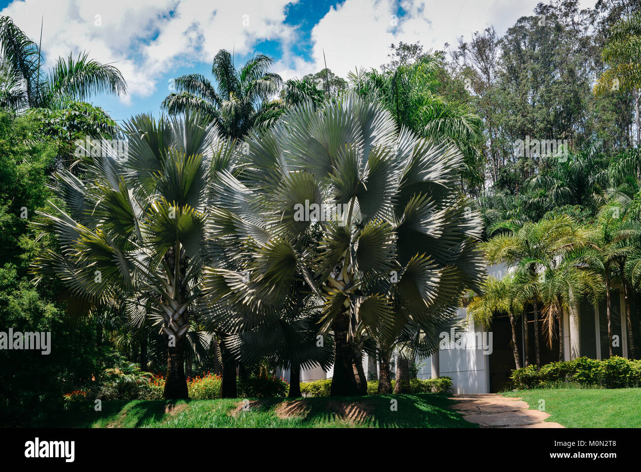 Inhotim Institute is a museum and contemporary art museum as well as a botanic garden located in Brumadinho in the Stock Photo