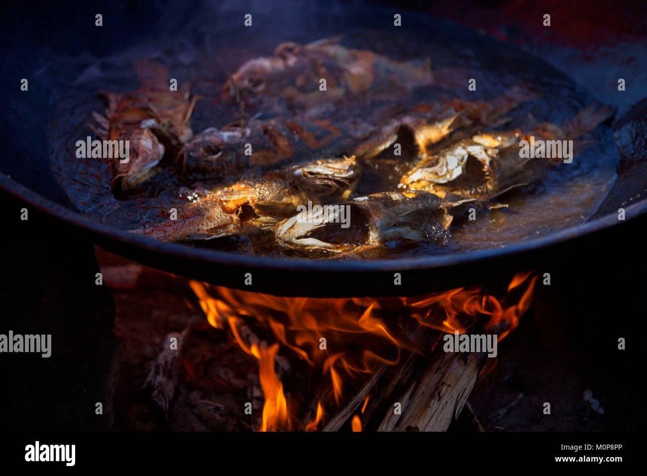 Tilapias stock photos tilapias stock images alamy for Good fried fish near me