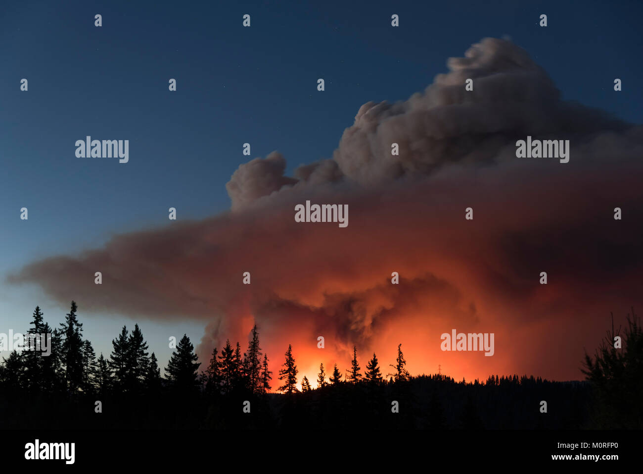 An image of the Jolly Mountain fire in the Cascades mountains near Cle Elum, Washington, USA on September 1, 2017. - Stock Image