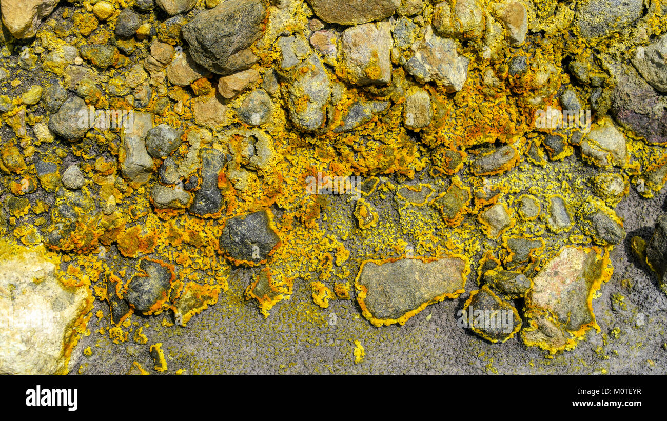 Sulfur sulphur deposits on the side of a tiny stream in the caldera.  White Island / Whakaarian Volcano, Bay of - Stock Image