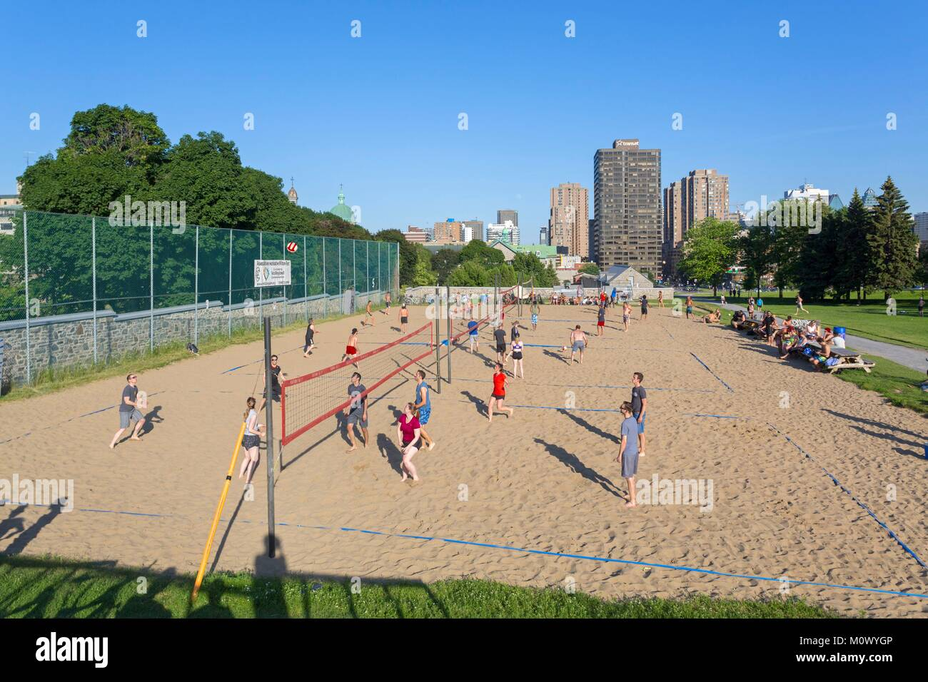 Canada,Quebec province,Montreal,Mount Royal,Jeanne-Mance Park in the heart of the city,beach volleyball courts - Stock Image