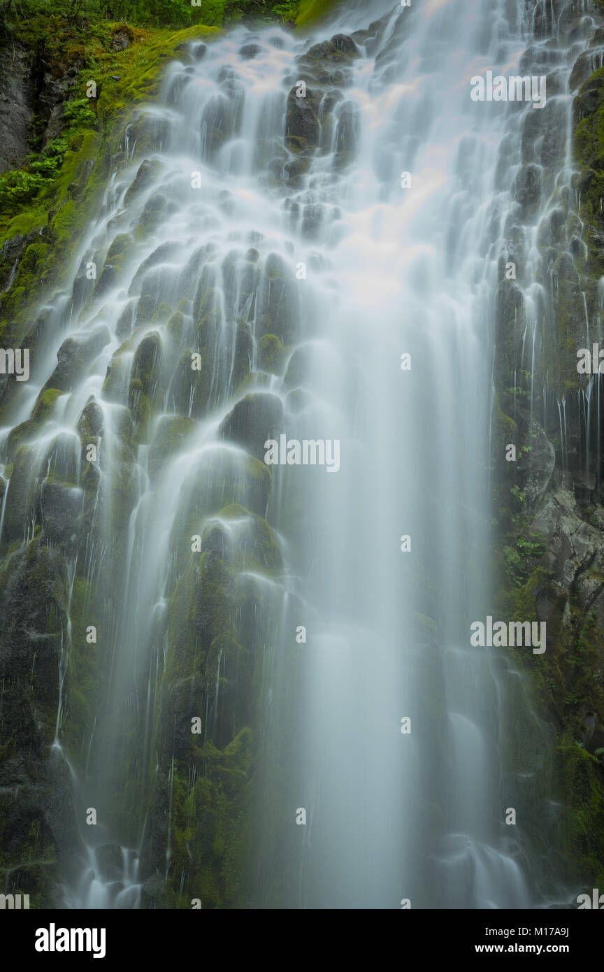 Water Washes Over Upper Proxy Falls in central Oregon - Stock Image