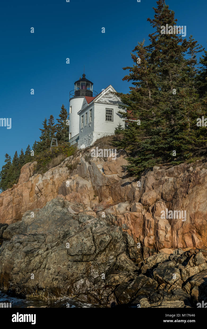 Bass Harbor Lighthouse and Pine Trees - Stock Image