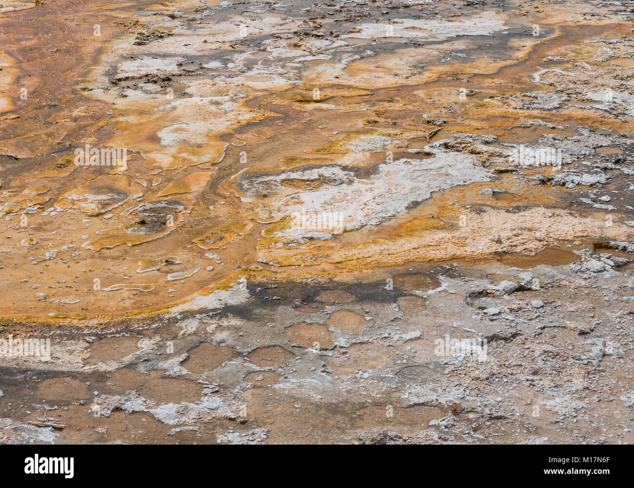 Close Up of Orange Residue  From Hot Spring in Yellowstone - Stock Image