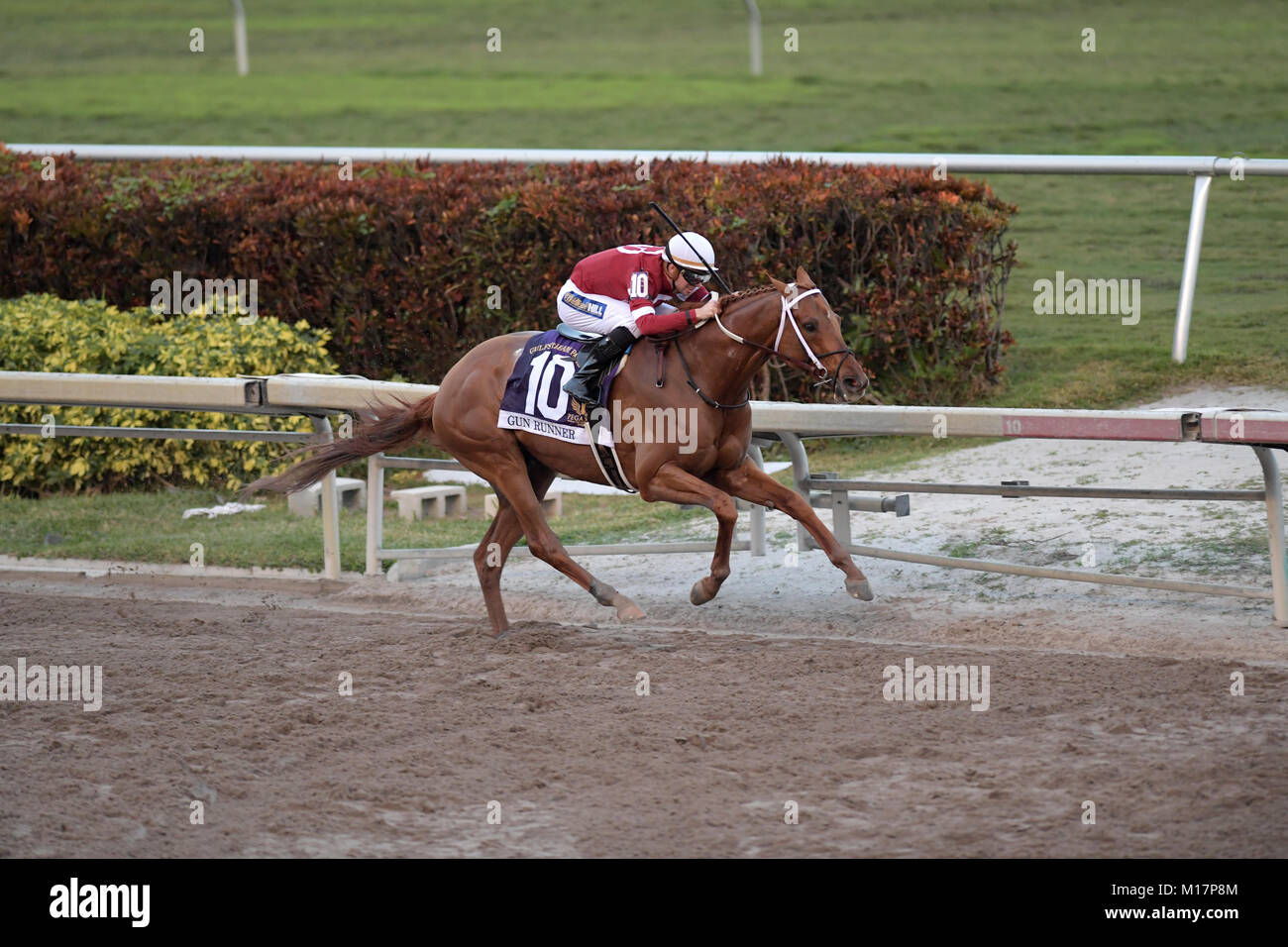 Betting Florida United States Stock Photos & Betting ...