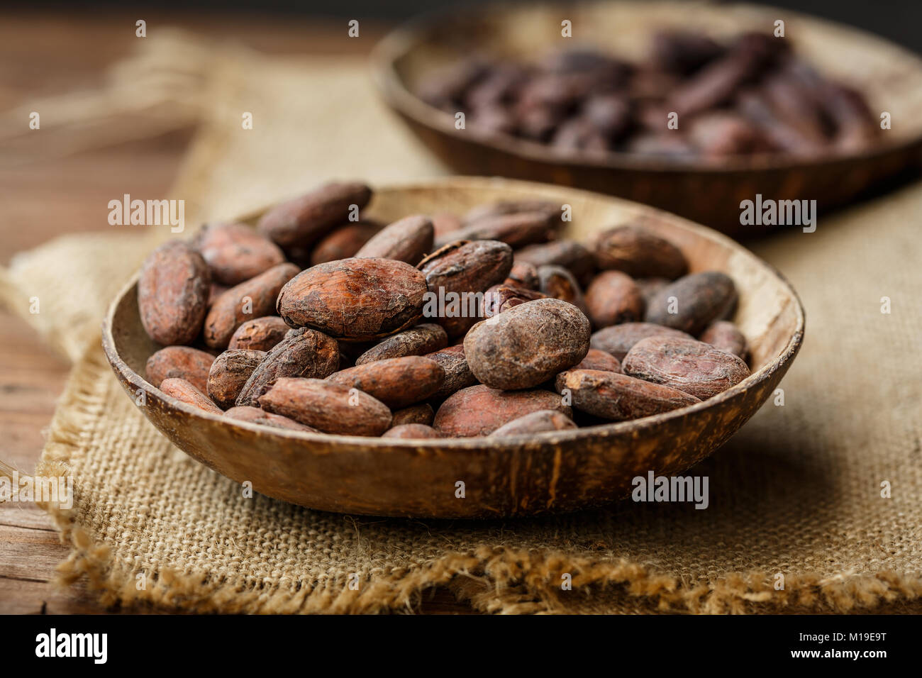 cacao beans in a bowl - Stock Image
