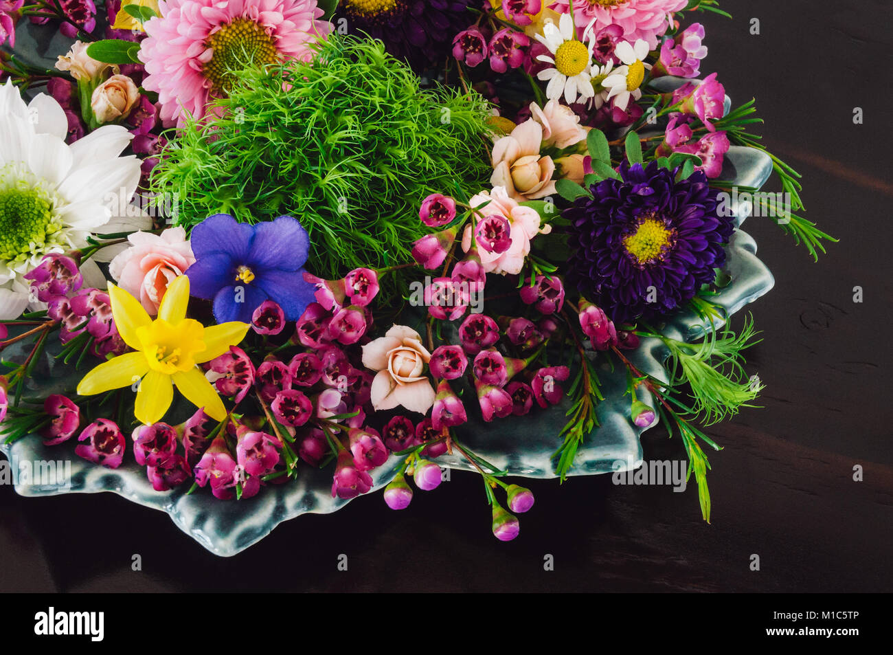 Assorted Spring Flowers on Dark Table, including Violets, Dafodils, Chrysanthemums, Waxflowers, Roses, and Chamomile. - Stock Image