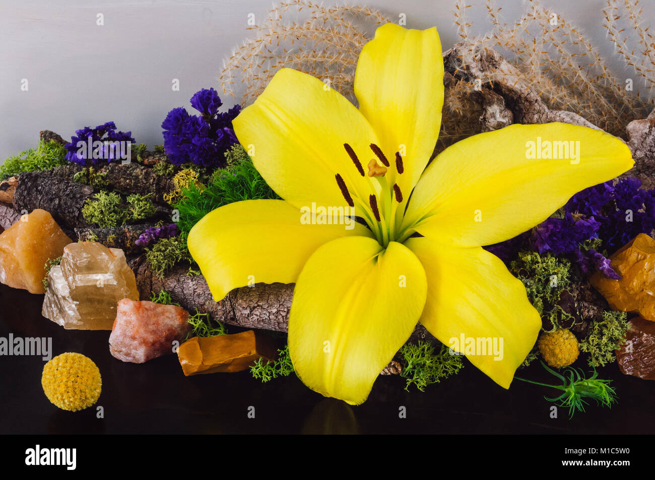 Yellow Lily with Assorted Rough Stones and Dried Moss and Flowers - Stock Image