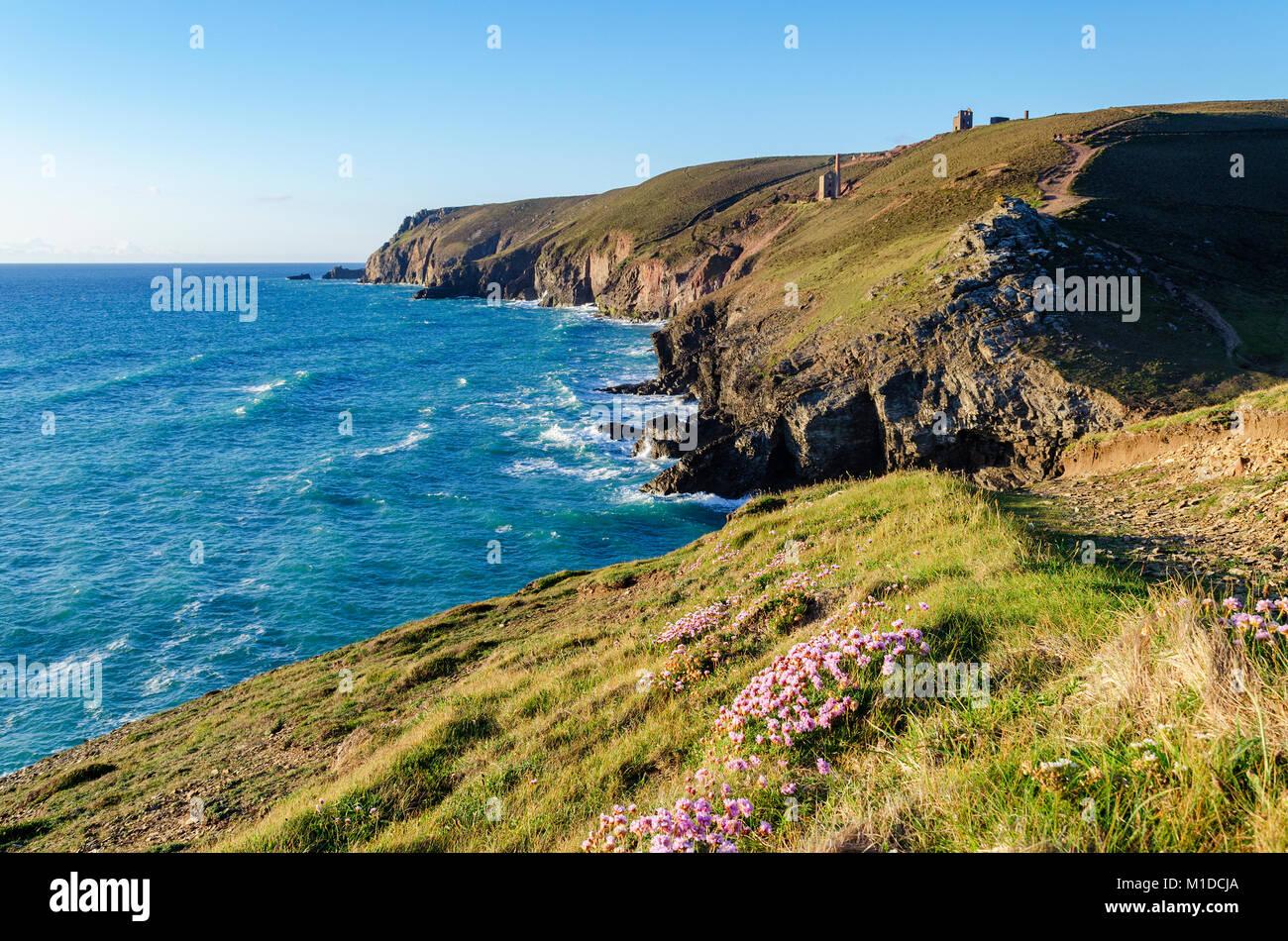 aonb the tin mining heritage coastline near st.agnes in cornwall, england, britain, uk. - Stock Image