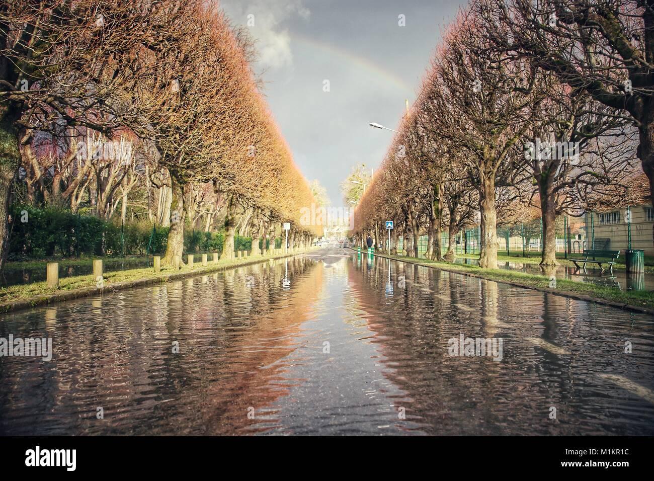 Sandrine Huet / Le Pictorium -  The Seine river flood, January 2018 -  26/01/2018  -  France / Ile-de-France (region) - Stock Image