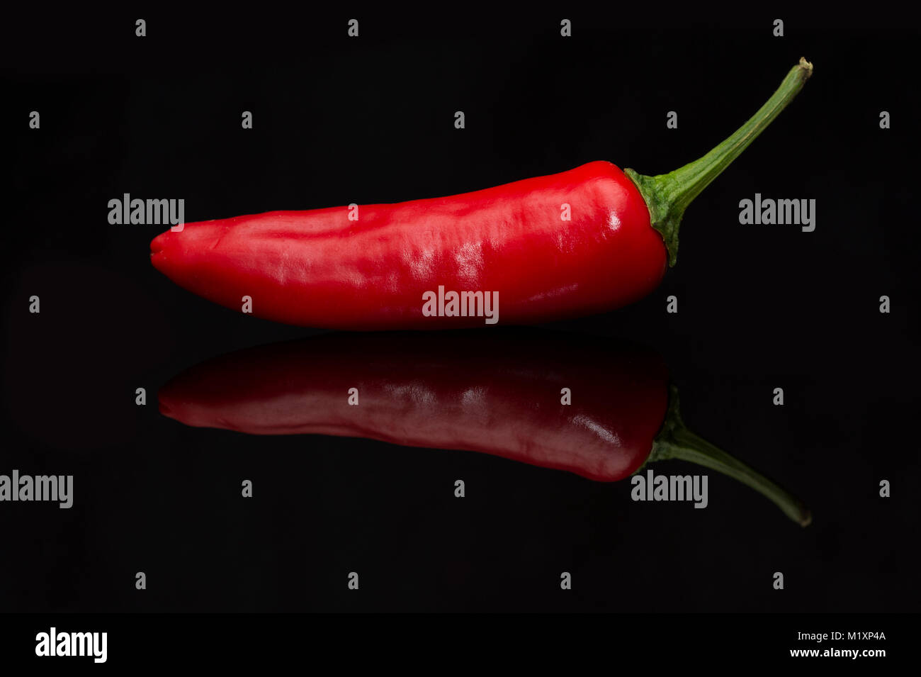 A Red Chili (Chilli) Pepper with reflection on a gloss black background - Stock Image